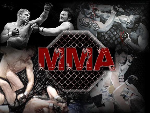 MMA kicks some ass!