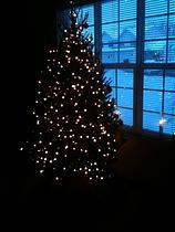 No Christmas Carol